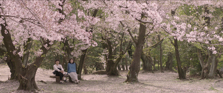 sinopsis film korea memories of a dead end